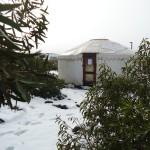 שלג במתחם