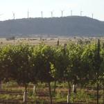 הטורבינות בתל עסניה